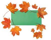 Карточка осени Стоковая Фотография