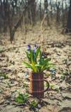 карточка пасха Красивые Bluebell леса и лес весны Стоковые Фото