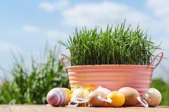 карточка пасха Пасхальные яйца на предпосылке голубого неба Стоковое фото RF