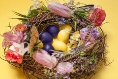 карточка пасха Покрашенные пасхальные яйца в гнезде на желтой предпосылке Стоковая Фотография RF