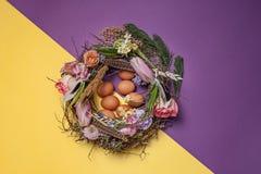 карточка пасха Покрашенные пасхальные яйца в гнезде на желтой предпосылке Стоковое Фото