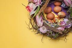 карточка пасха Покрашенные пасхальные яйца в гнезде на желтой предпосылке Стоковое Изображение RF