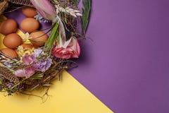 карточка пасха Покрашенные пасхальные яйца в гнезде на желтой предпосылке Стоковые Фотографии RF