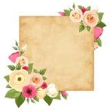 Карточка пергамента с розовыми и оранжевыми розами, lisianthuses и лютиком цветет Вектор EPS-10 Стоковое фото RF