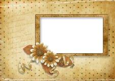 карточка предпосылки красивейшая ставит точки сбор винограда Стоковая Фотография RF