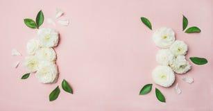 карточка предпосылки пустая флористическая Стоковые Фото