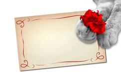 карточка 2007 приветствуя счастливое Новый Год Стоковое фото RF