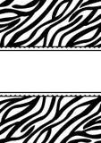 Карточка приглашения знамени печати зебры Стоковое Изображение