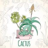 Карточка приглашения кактуса в баках Стоковые Фото
