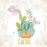 Карточка приглашения кактуса в баках Стоковая Фотография