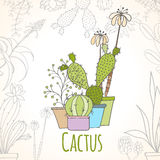 Карточка приглашения кактуса в баках Стоковое Фото