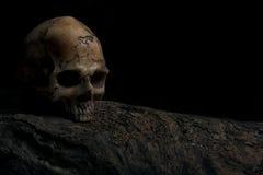 Карточка приглашения на хеллоуин с человеческим черепом Стоковые Фотографии RF