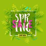 Карточка продажи весны на зеленом цвете Стоковое фото RF
