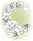 Карточка рамки с цветками иллюстрация штока