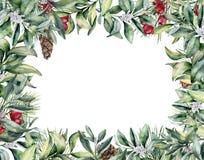 Карточка рождества акварели флористическая Покрашенный рукой завод зимы и иллюстрация штока