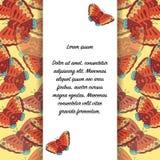 Карточка с бабочками и место для текста Иллюстрация вектора