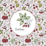 Карточка с декоративными ягодами Стоковое фото RF