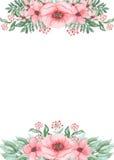 Карточка с папоротником зеленого цвета акварели и розовыми цветками Стоковое Изображение