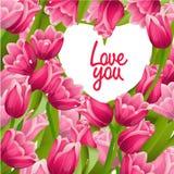 Карточка с тюльпанами и рамкой сердца форменной Стоковые Фото