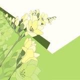 Карточка с цветками Стоковые Фотографии RF