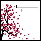 Карточка с blossoming деревом Сакурой Стоковые Фото