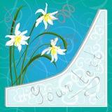 Карточка с daffodils Стоковое Фото