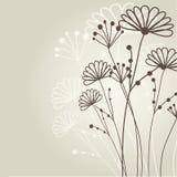 карточка флористическая Стоковая Фотография
