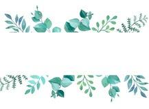 Карточка флористического дизайна вектора в акварели
