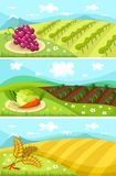 Карточка хлебоуборки бесплатная иллюстрация
