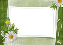 карточка цветет сбор винограда праздника Стоковое Изображение RF