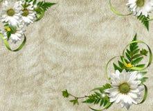 карточка цветет тесемки праздника Стоковые Изображения