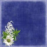 карточка цветет тесемки праздника Стоковая Фотография