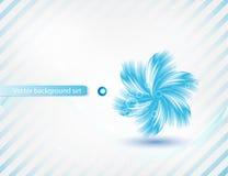 Карточка цветка хризантемы вектора голубая. конспект Стоковая Фотография