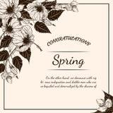 Карточка цветка хризантемы вручную рисуя Стоковое фото RF