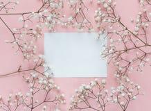 Карточка чистого листа бумаги с рамкой чувствительных маленьких белых цветков дальше Стоковые Фото