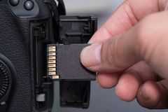 карточка SD вставки руки в камере Стоковое Фото