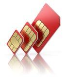 Карточка SIM в различных размерах Стоковое Изображение RF