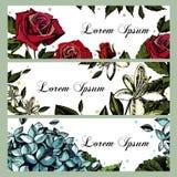 Карточки приглашения с изображениями цветков Поднял Иллюстрация штока