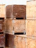 картошка клетей Стоковая Фотография RF