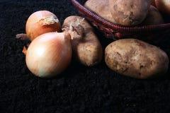 картошка луков стоковое фото