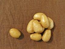 картошка мешковины стоковое фото