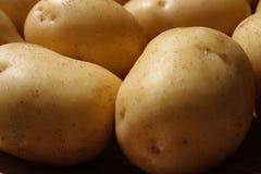 картошка предпосылки Стоковые Изображения