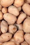 картошка предпосылки Стоковые Фото