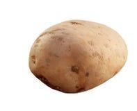 картошка Стоковое Изображение