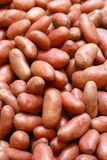 картошки бакалеи маленькие красные стоковые изображения