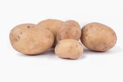 картошки белые Стоковые Фотографии RF