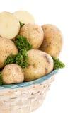 Картошки и петрушка в корзине Стоковое фото RF