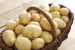 картошки корзины полные Стоковые Изображения RF