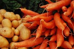 картошки мангольда морковей швейцарские Стоковое Изображение