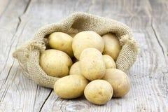 картошки мешковины мешка сырцовые Стоковое Изображение RF